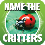Name The Critter App Icon