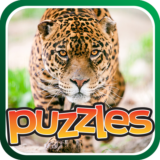 Jungle Cat Puzzles Game Icon