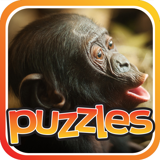 Monkey Puzzles Game Icon